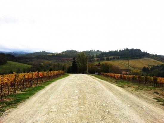 tuscany-landscape7