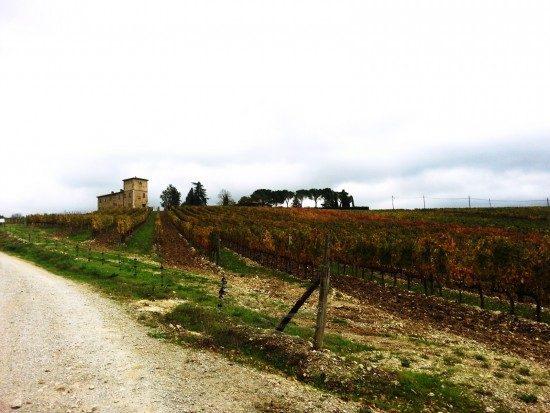tuscany-landscape8