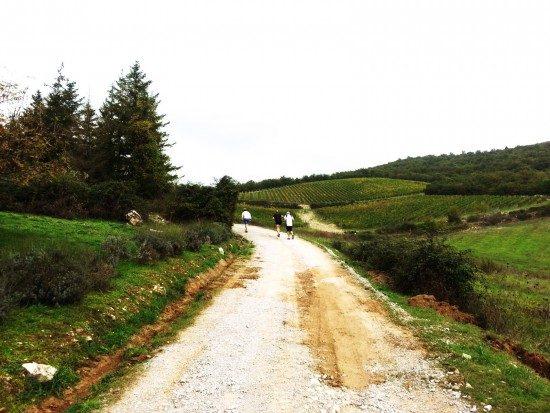 tuscany-landscape9